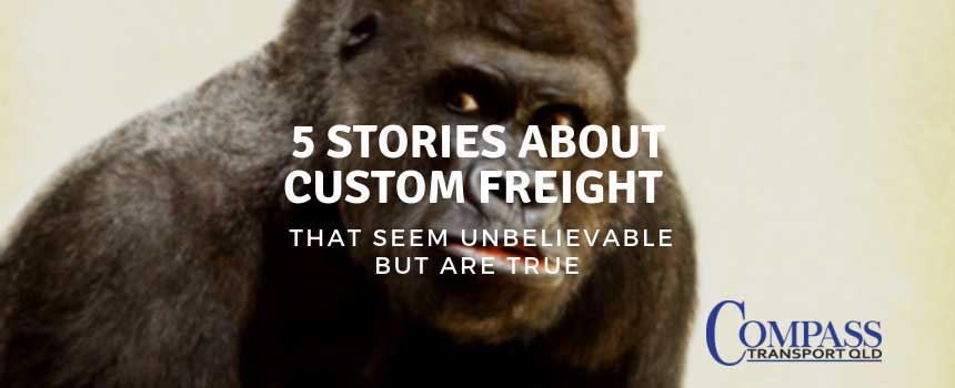 5 Stories About Custom Freight that Seem Unbelievable But are True